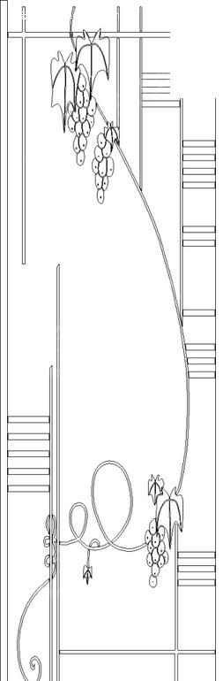 葡萄/卷曲纹/线条构成的黑白图案