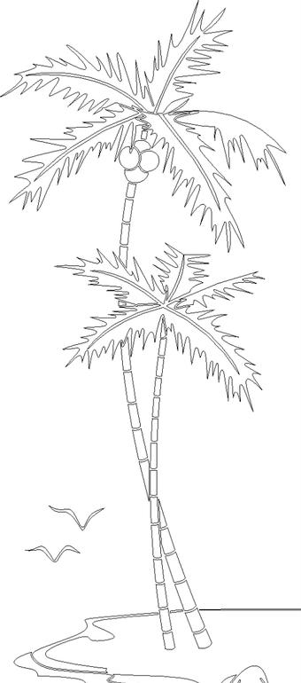 海滩上的两棵椰子树