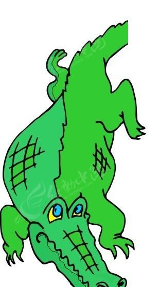 手绘一条绿色的鳄鱼