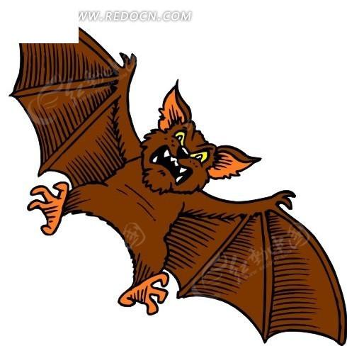 手绘棕褐色的蝙蝠