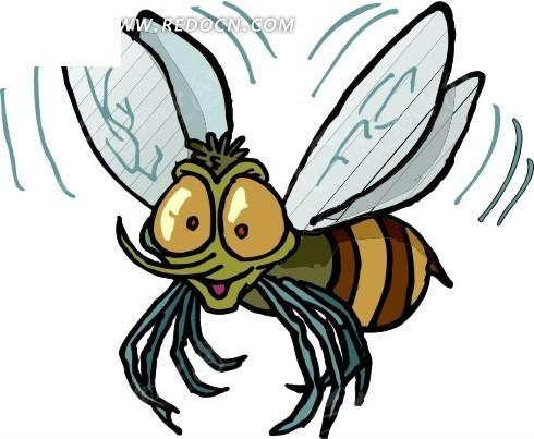 振翅的蜜蜂图片