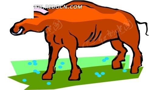 手绘红色的公牛