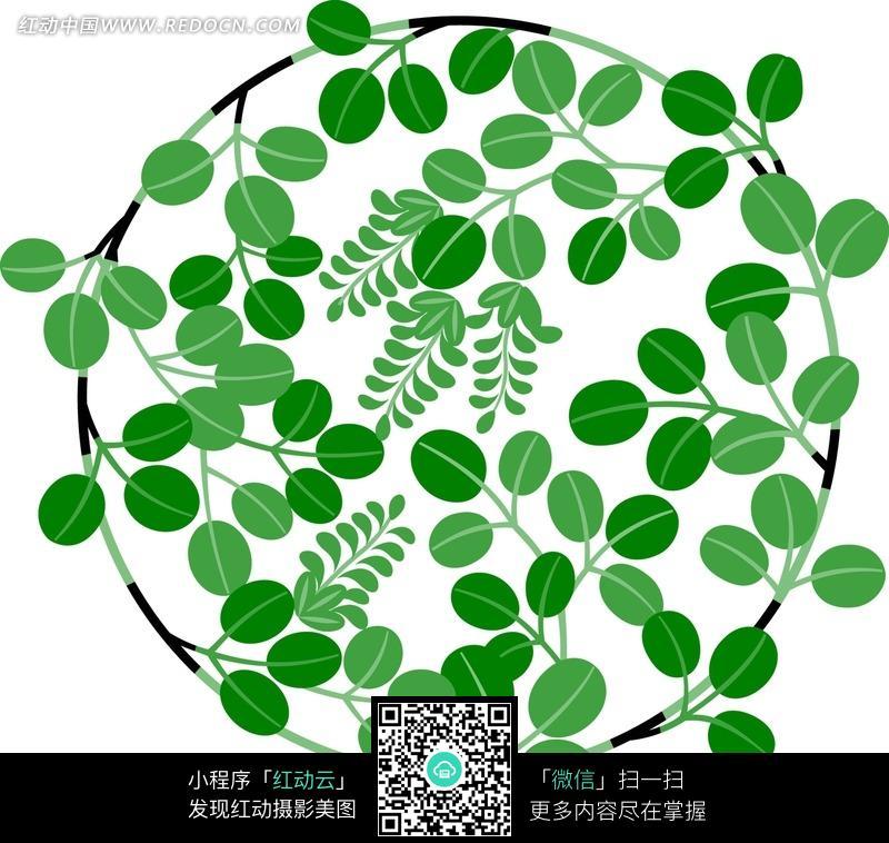 圆形 绿藤 枝叶 绿叶 花藤 花纹 花纹素材 花边 花边素材 底纹 背景
