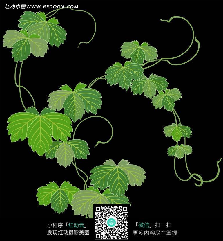 黑色 藤蔓 绿叶 绿藤 植物 花纹 花纹素材 花边 花边素材 背景素材