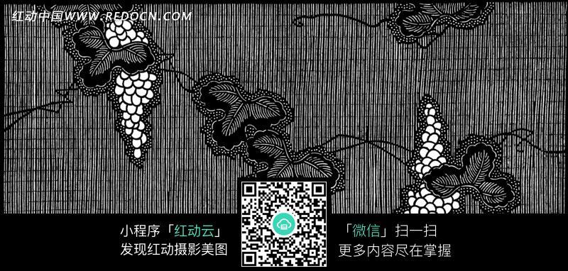 手绘 黑白 叶子 葡萄 植物 藤蔓 背景 背景素材 底纹