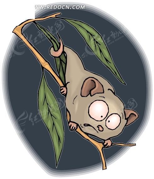 蝙蝠 卡通动物 卡通画 插画 手绘 矢量素材 动物图片 卡通形象 免费