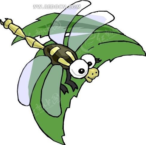手绘停着叶子上的蜻蜓