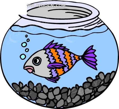 手绘在铺着石子的鱼缸里游动的鱼矢量图_水中动物