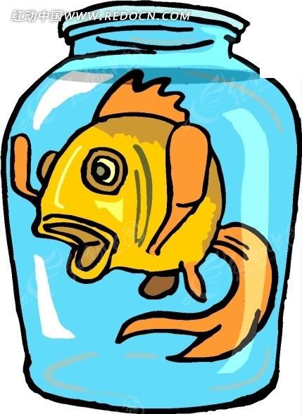 手绘玻璃罐中的金鱼