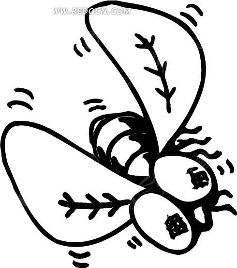 手绘黑色线描苍蝇矢量素材