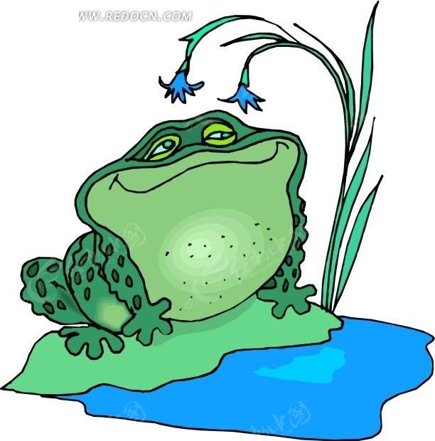卡通画坐在荷叶上的青蛙