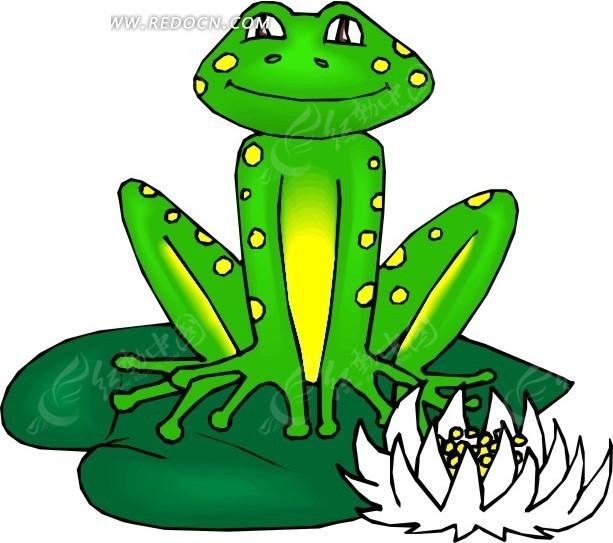 手绘坐在荷叶上的青蛙
