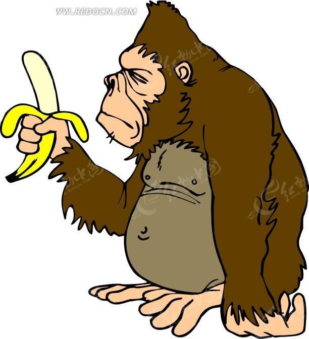 猩猩 猴子 卡通动物 卡通画 插画 手绘 矢量素材 动物图片 卡通形象
