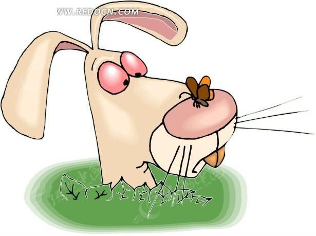 手绘鼻子上停着蝴蝶的小兔子