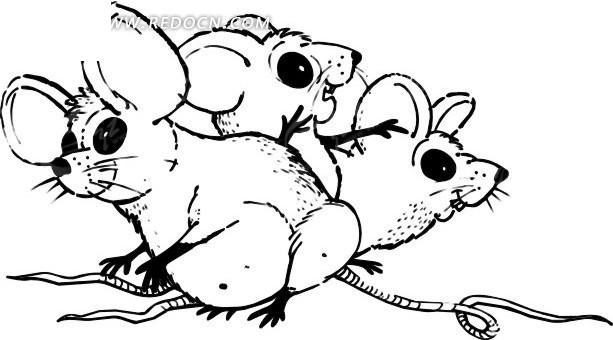 手绘线描老鼠