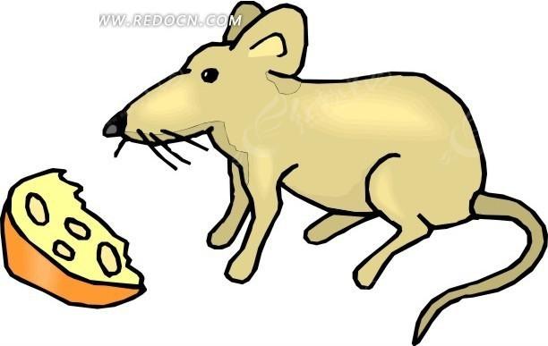 手绘卡通画看着奶酪的老鼠矢量图