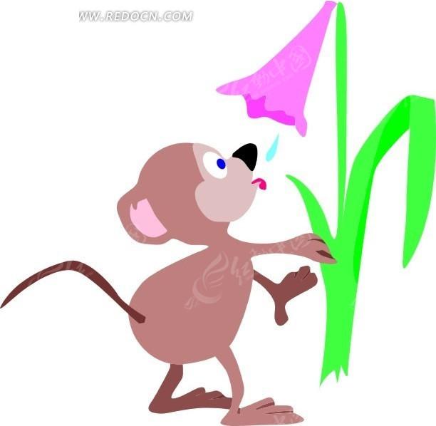 手绘花下喝露水的老鼠图片