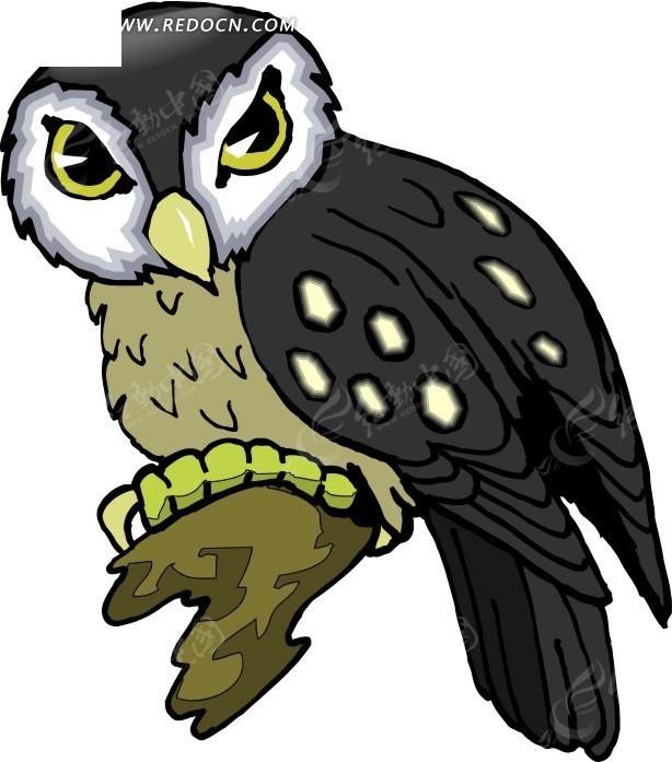 手绘插画黑色的猫头鹰其他素材免费下载_红动网