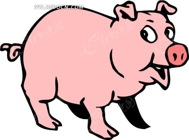 手绘插画一只粉红色的小猪