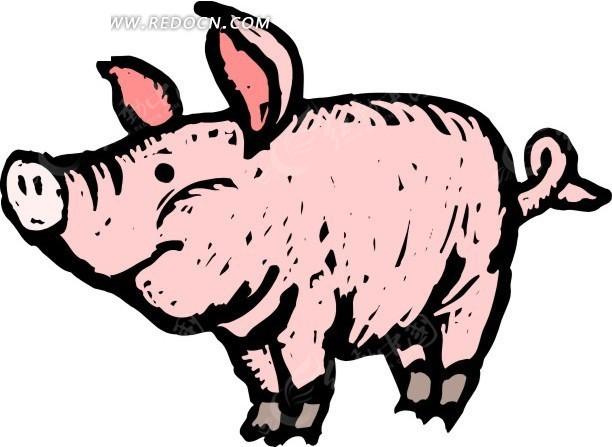 儿童手绘粉红色的小猪猪矢量图_陆地动物