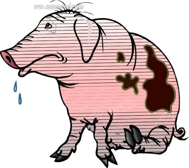 有关猪的创意画