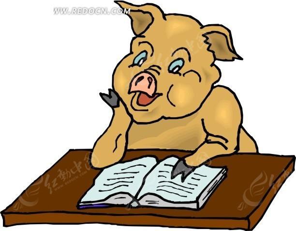 认真看书的小猪卡通画