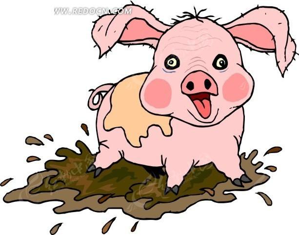 泥巴中的小猪卡通画图片