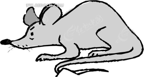 一只灰色的老鼠手绘素材