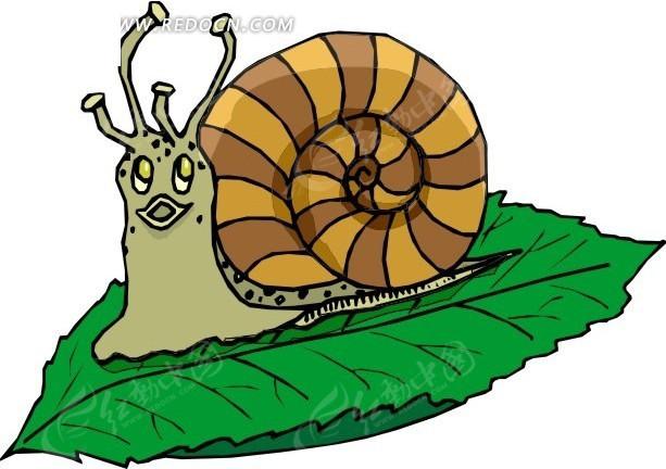 手绘树叶上的蜗牛