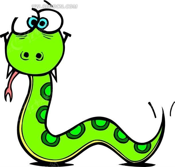 绿蛇  手绘