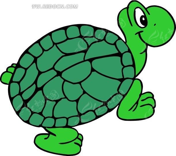 手绘卡通绿色乌龟