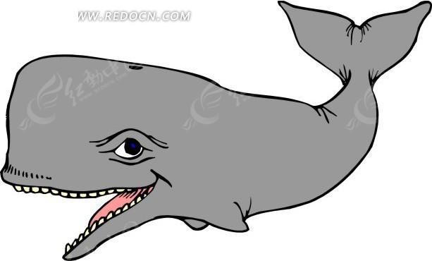 一头抹香鲸的手绘素材