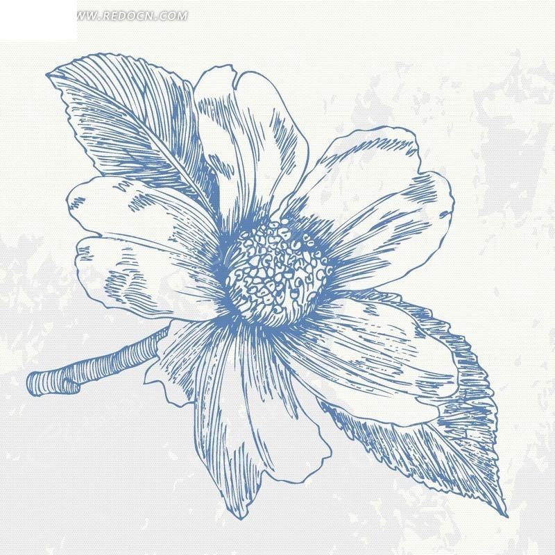 手绘精美花朵