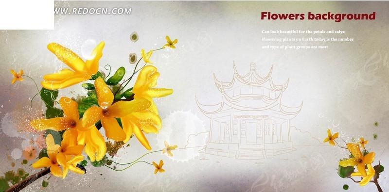 中国风建筑线稿背景上的手绘连翘花