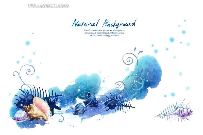 蓝色调涂鸦背景上的手绘贝壳海螺