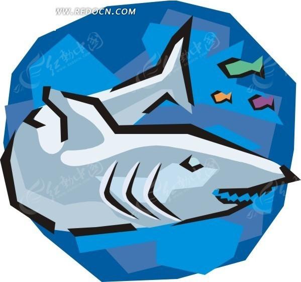 鲨鱼内脏身体结构图