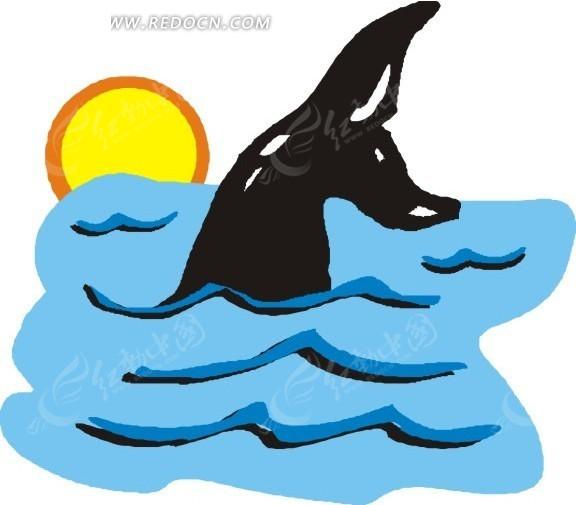 手绘插画水面露出的海豚尾巴图片