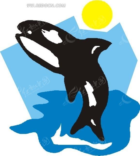 手绘插画从海面跃出的海豚