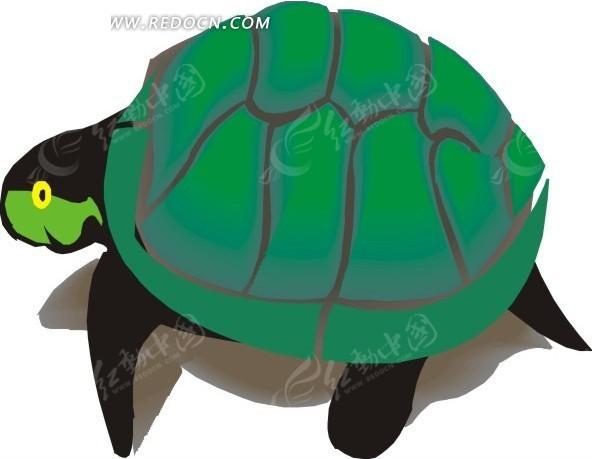 儿童手绘背着绿龟壳的乌龟矢量图_水中动物