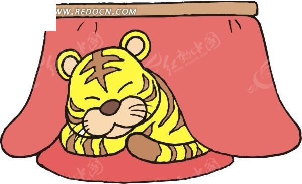 红桌布下睡觉的老虎