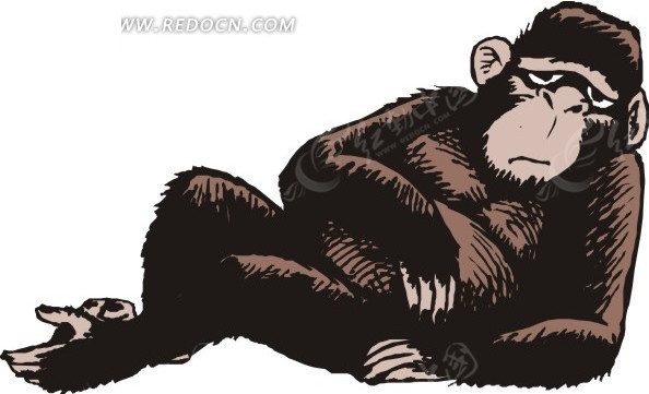 躺卧的大猩猩矢量图_陆地动物