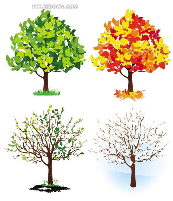 春夏秋冬树木集