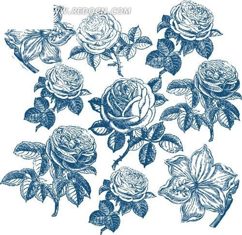 简单玫瑰花静物素描