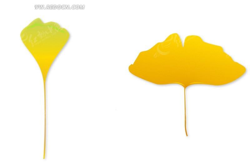 银杏叶矢量素材矢量图 花草树木 -银杏叶矢量素材