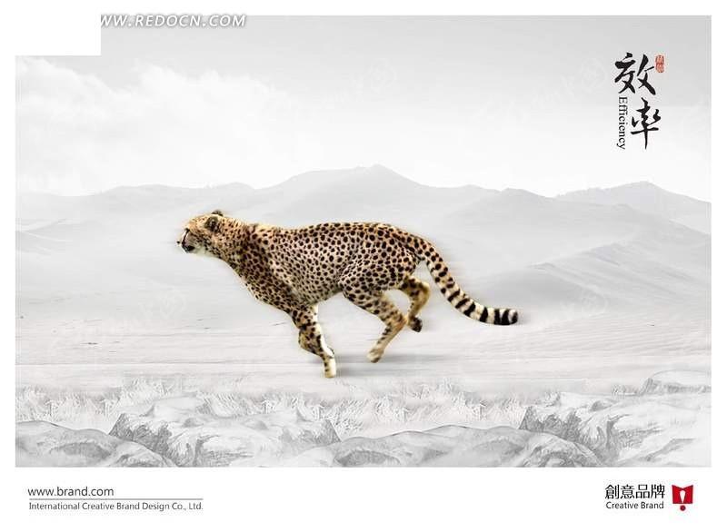 正在奔跑的豹子海报设计psd分层素材