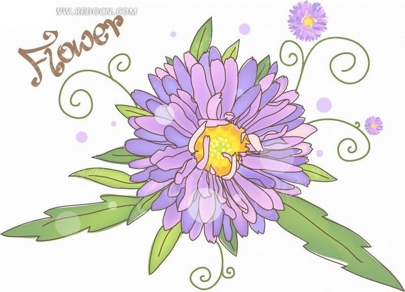 手绘紫色蟹爪菊花图片