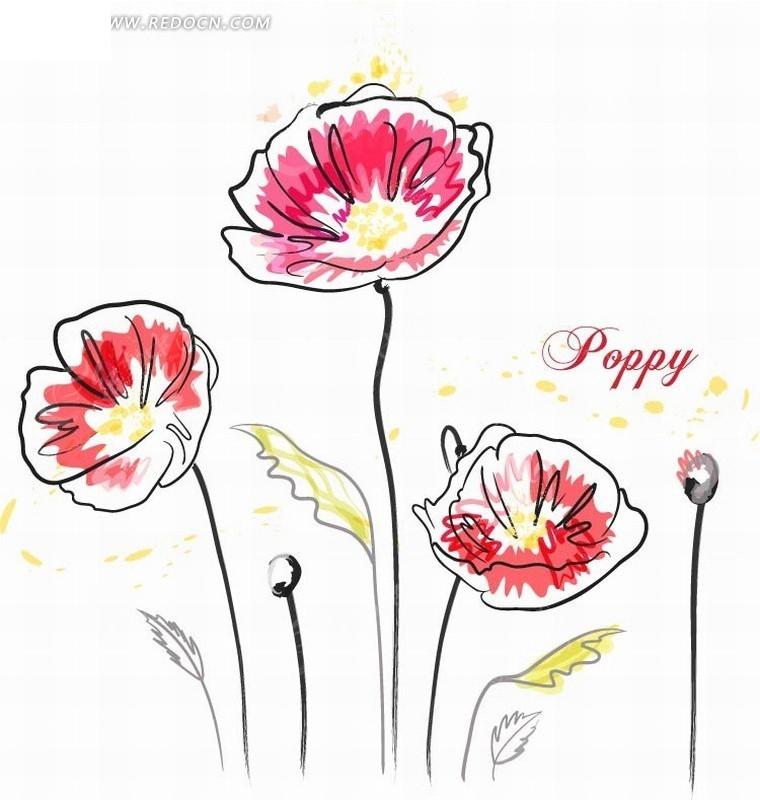 手绘矢量创意花朵线稿插画设计稿件