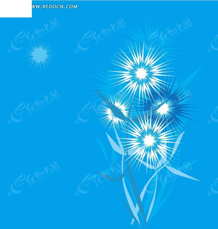 植物插画—蓝色背景上的白色蓝色花朵