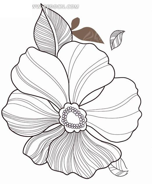 手绘黑色线条的花朵和叶子psd分层素材