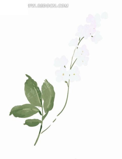 竖版a4纸植物边框手画